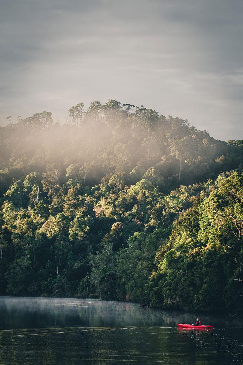 Pieman River Tasmanien
