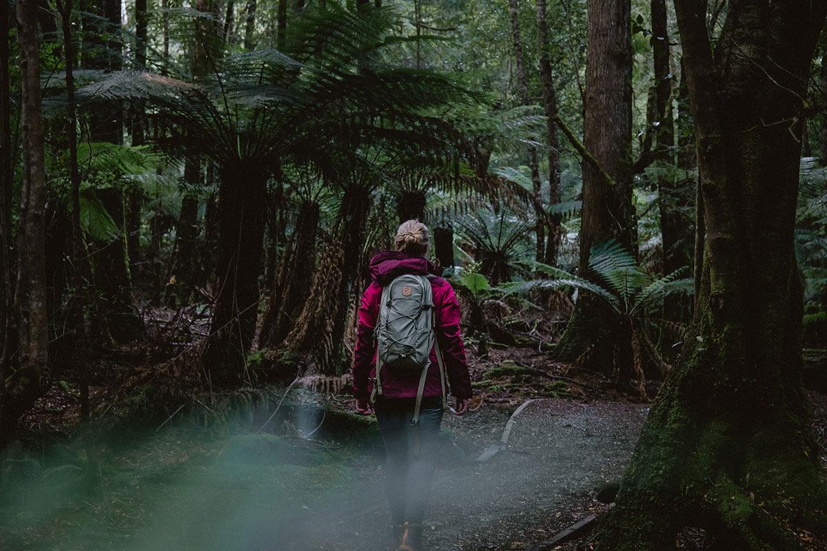 Trowutta Arch Tarkine Drive Tasmanien