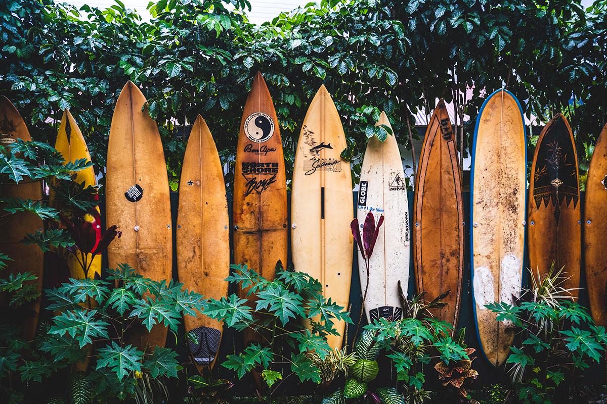 Surfen auf Hawaii. Luxureisen