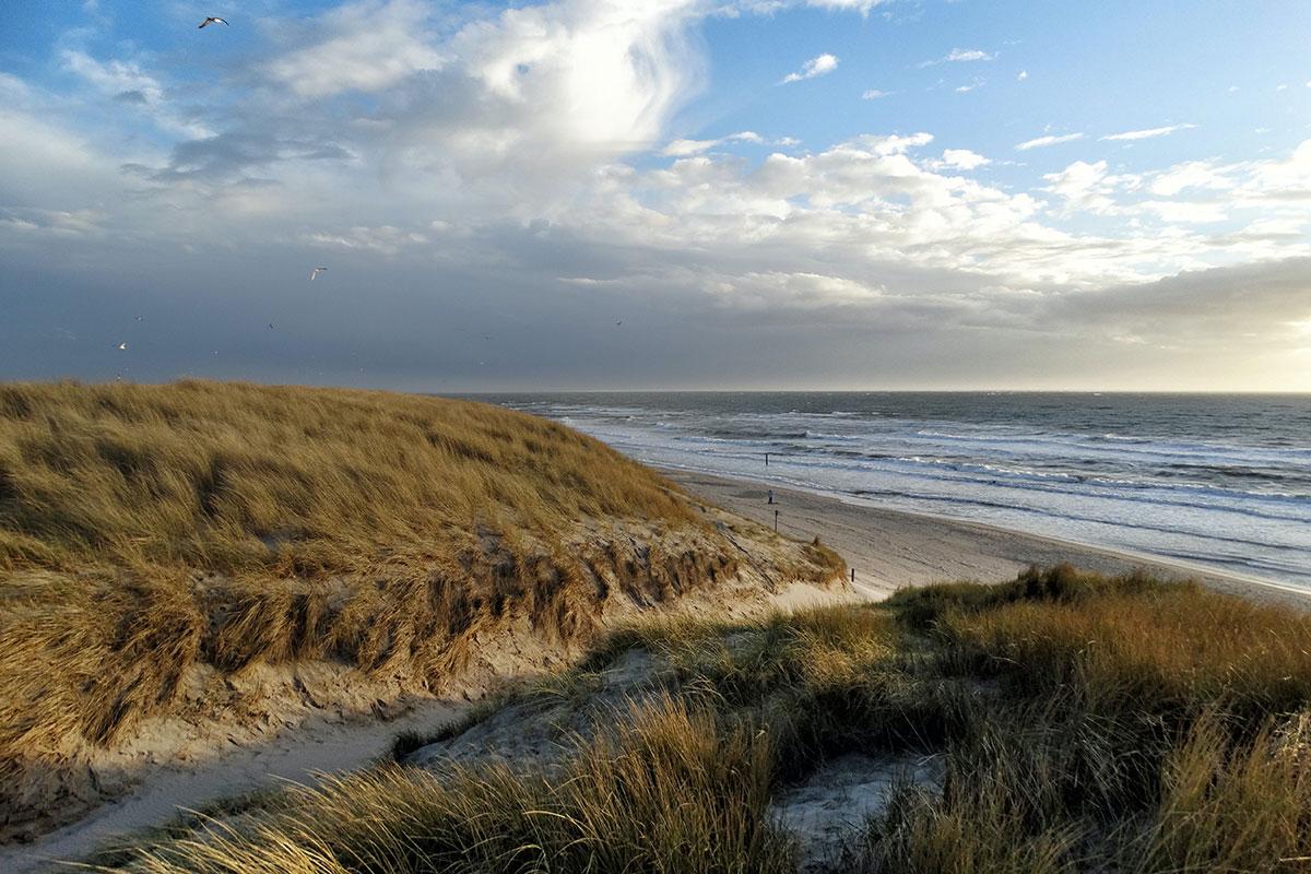 Die größte der westfriesischen Inseln: Texel. Luxusreisen