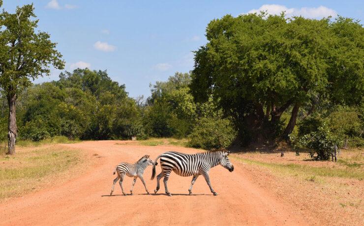 Sambia. Luxusreisen