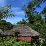 Luxusreisen Papua-Neuguinea