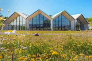 Bornholm: Sonne mit Wonne in Rønne